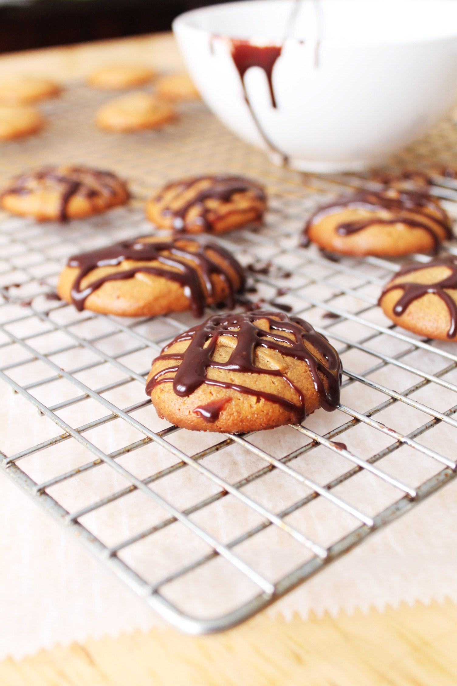 3 Ingredient Peanut Butter Cookie Gluten Free Fix